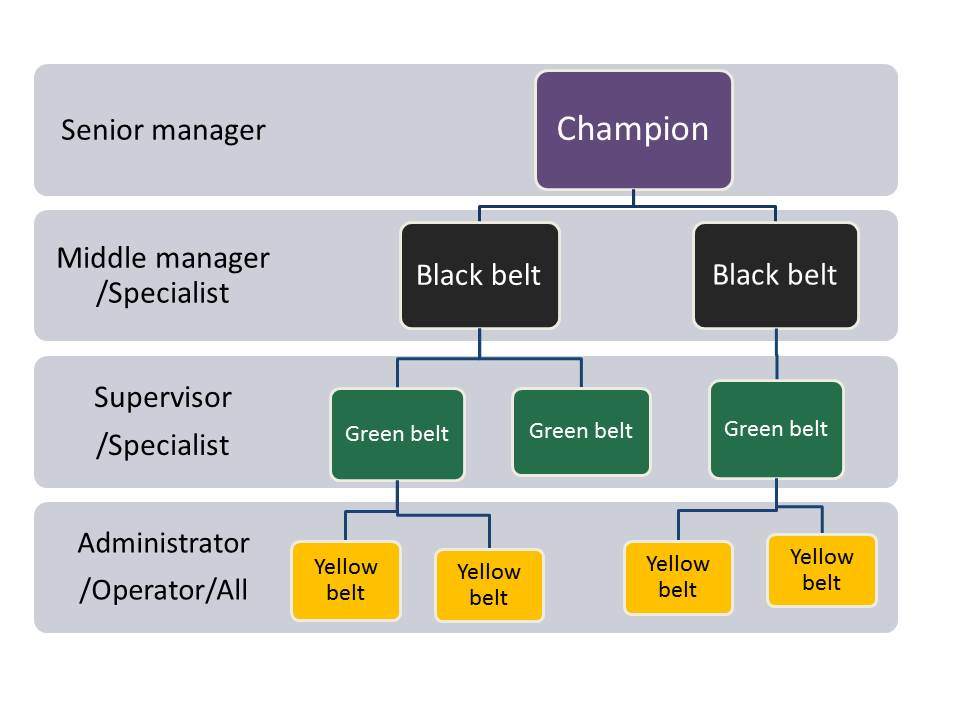 Six sixma organisation structure