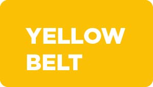 yellow belt six sigma